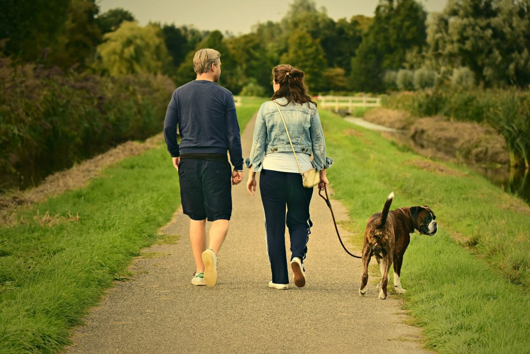 Penrose Physical Therapy Walking