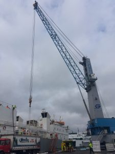 Port of Olympia Cattle Shipment Loading