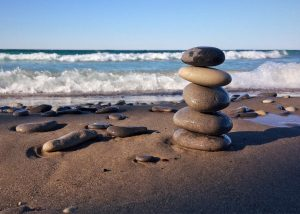 Life Balance 101: A Women's Wellness Workshop @ Shelly Haas, Wellness Coaching