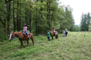 2019 Thurston County Summer Camps Nature Nurtures Farm