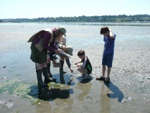 Olympia Parks Arts and Recreation meet the beach
