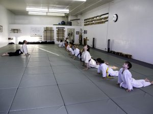 Olympia Parks Arts and Recreation youth aikido