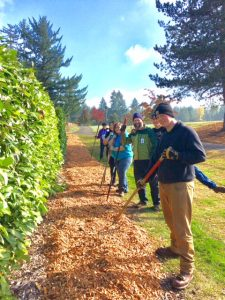 Evergreen Park Volunteer Work Party @ Evergreen Park