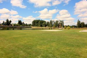Rob Rice Homes Steilacoom Ridge greenspace
