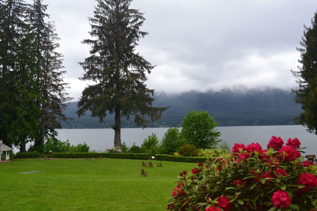Lake Quinault Lodge Lake with red flowers