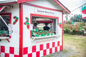 Get Fresh Spooner Berry Farms Berries at Spud's Produce Market