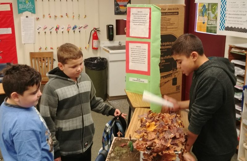 Yelm Middle School Nisqually Project