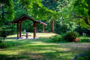 Frye Cove Park Thurston County Parks Picnic Shelter by Molly Walsh