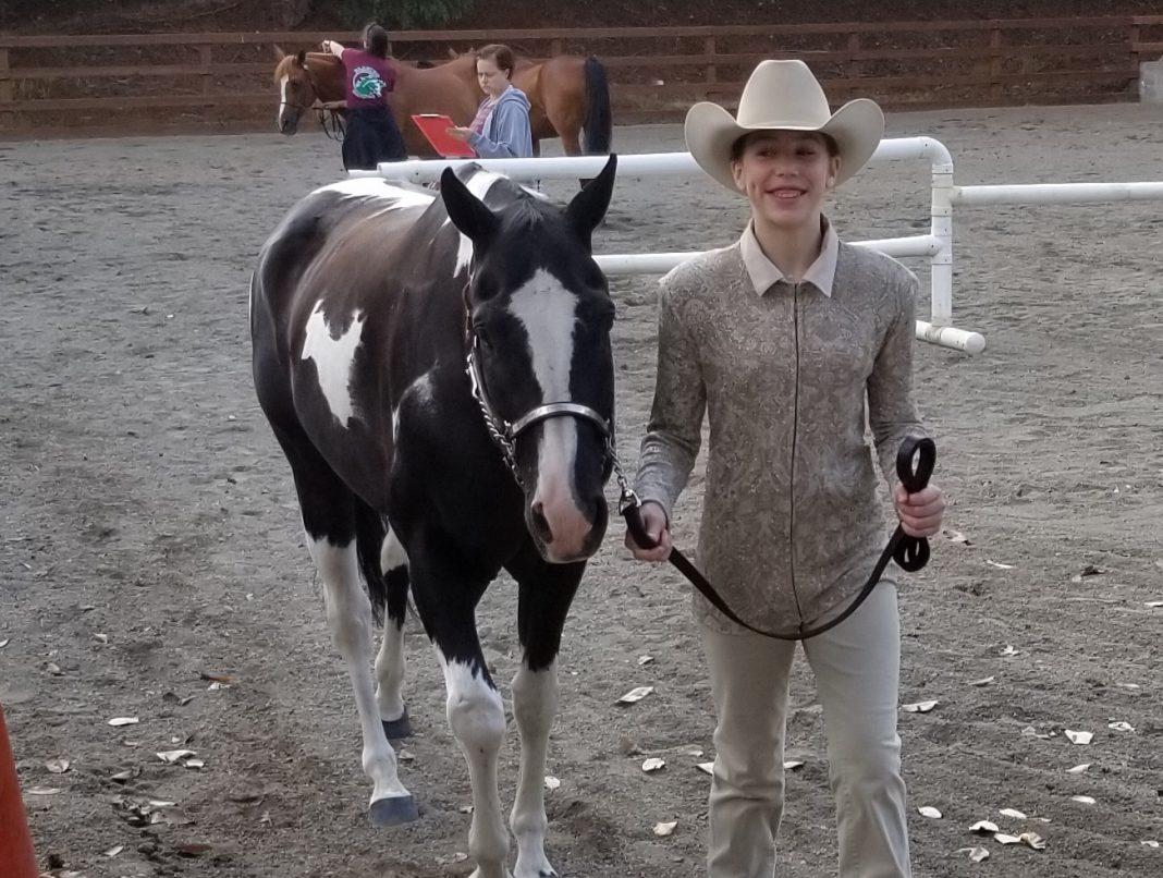 Katelyn Dorsey South Bay Horse 4H Thurston County Fair