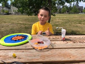 Kid on a picnic