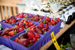 Olympia Farmers Market Berry Harvest Celebration Burnt Ridge Nursery Booth
