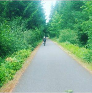 Western Chehalis Trail