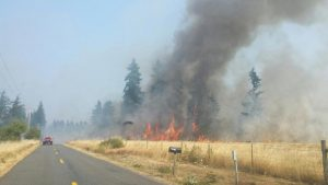 Fire in Thurston County