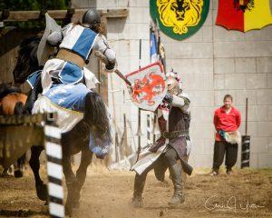 Washington Midsummer Renaissance Faire YetterKnights