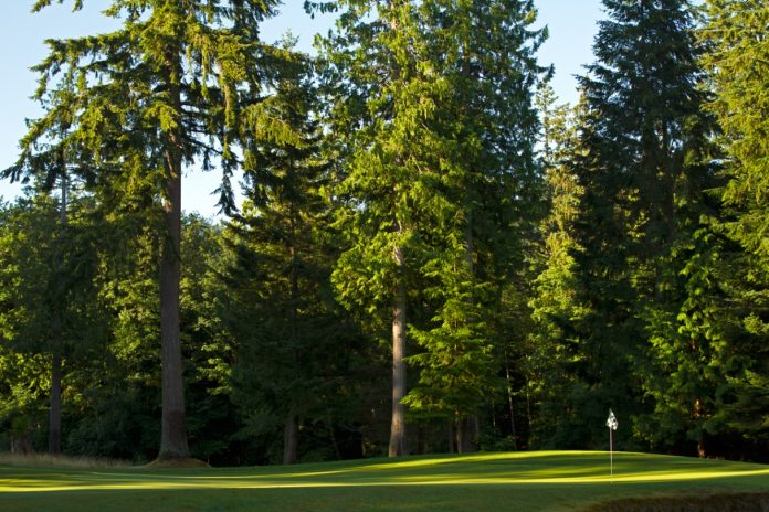 Whatcom County Golf Courses Lake Padden