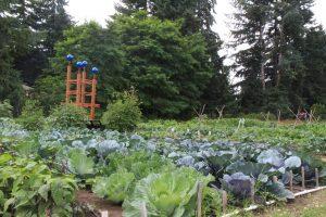 st mark large garden