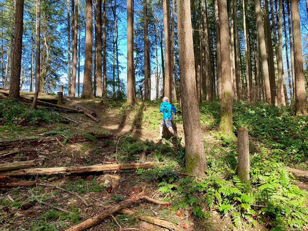 LBA trail run Olympia