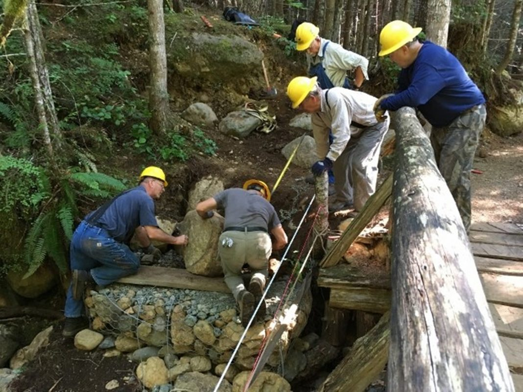 Trail Crew Bridge Repair