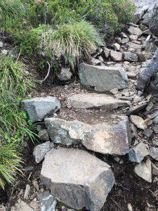 Trail on Mt Ellinor