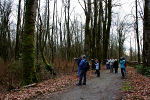 Birding with experts at Nisqually