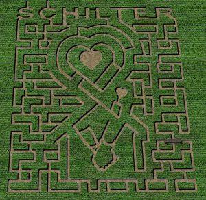 Schilter Family Farm Corn Maze 2019