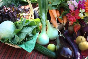 Evergreen Farmer's Market @ The Evergreen State College