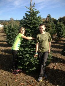 Christmas Tree Farms Thurston County Schilters