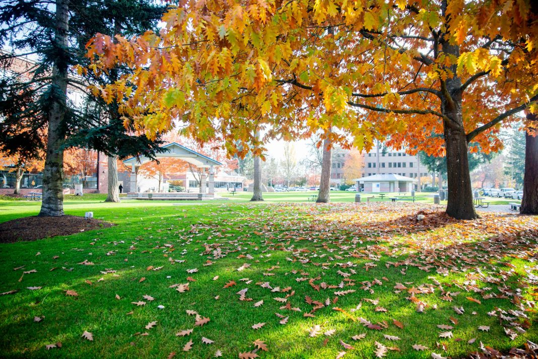 City of Lacey Money Best 75 Places to Live in America List Huntamer Park