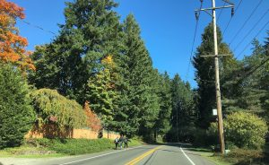 Mullen Road