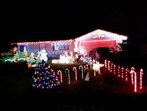 Narada Court Lacey Christmas lights