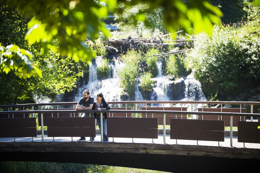 Olympia Federal Savings Loving Where We Live Why Tourism Makes Thurston County Great Tumwater Falls