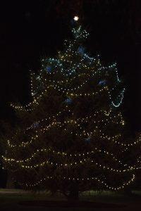 Saint-Martins-University-Christmas-Under-the-Canopy-Christmas-Tree.