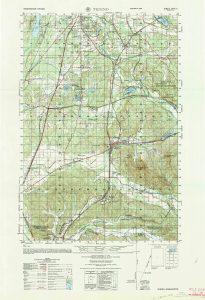 Tenino Military Map
