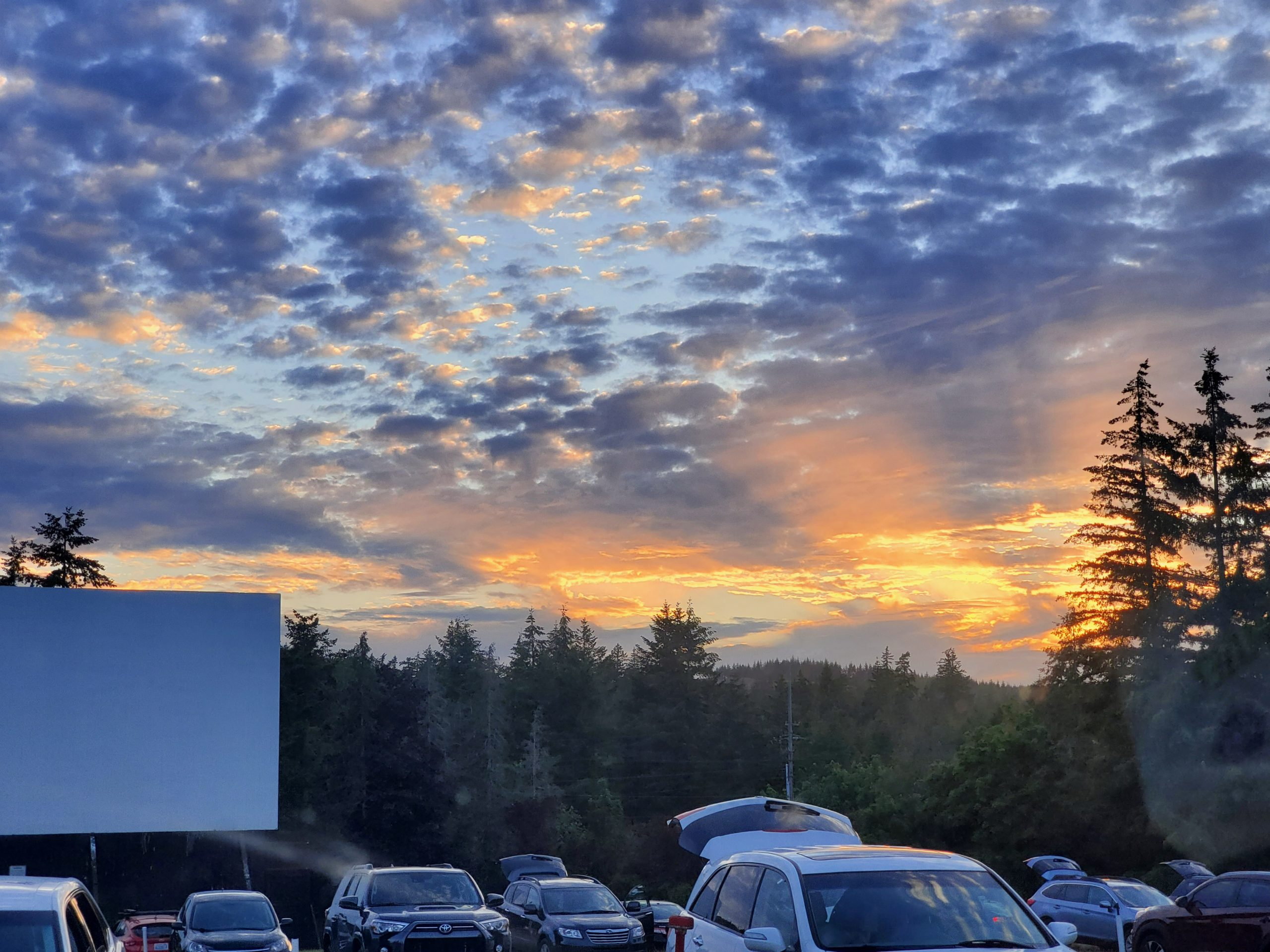 Miss The Movies Head To Skyline Drive In Movie Theater In Shelton Thurstontalk