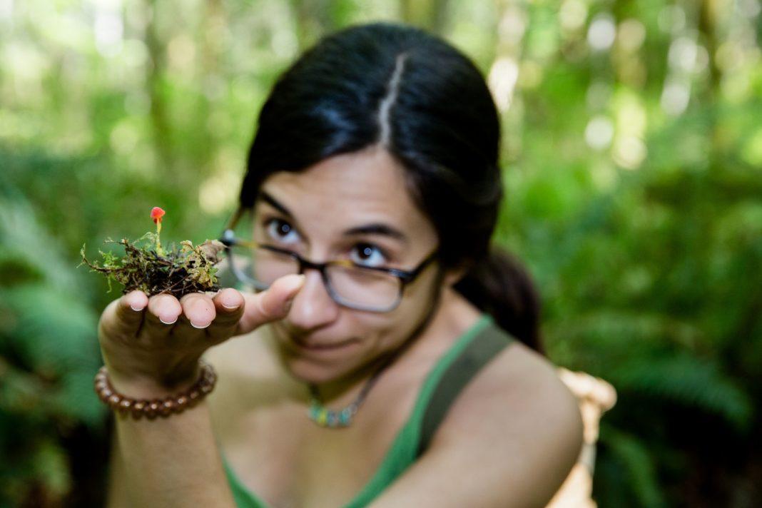 Evergreen College Paths of Study-Mushroom-Hunt