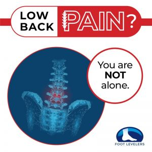 360 chiropractic Lacey Low back Pain