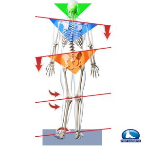 360 chiropractic Lacey Structural Imbalance