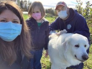 Great pyrs rescue Tilly Thurston County