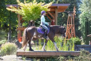 Kristina Lotz Merida The Bitless Bolender Horse Park