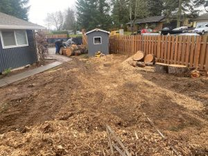 Lacey Chamber Chery Sparkuhls Stumps