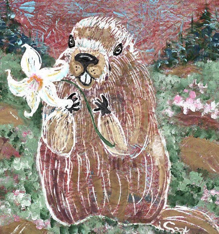Olympia art Judy-Cook-Friendly-Marmot