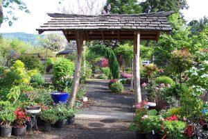 Garden Centers Olympia Laels Moon Garden Nursery
