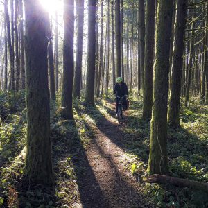 Intercity-Transit-bike-programs-outdoors-credit-IT