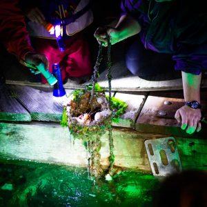 Puget-Sound-Estuariums-Pier-Peer-program-Gabrielle-Byrne-Olympia