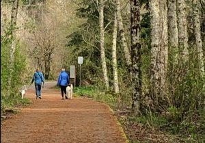 WalkTalkCoach Munro Trail Walkers