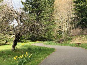 WalkTalkCoach-Olympia-Munro-Trail-Winding-Path