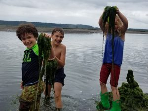 2021 Summer camp thurston county Nisqually Reach Nature Center