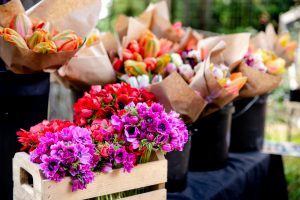 Evergreen-Organic-Farm-Flowers