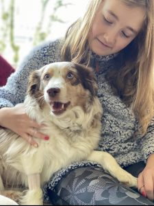 Willy-Lucky-Olympia-Nonprofit-Rescue-Dog-in-Foster-Care-of-Erin-Gantenbein
