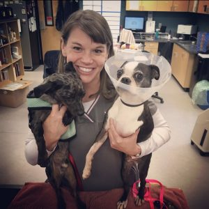 Willy-Lucky-Olympia-Nonprofit-Robin-Reese-with-Rescue-Dogs